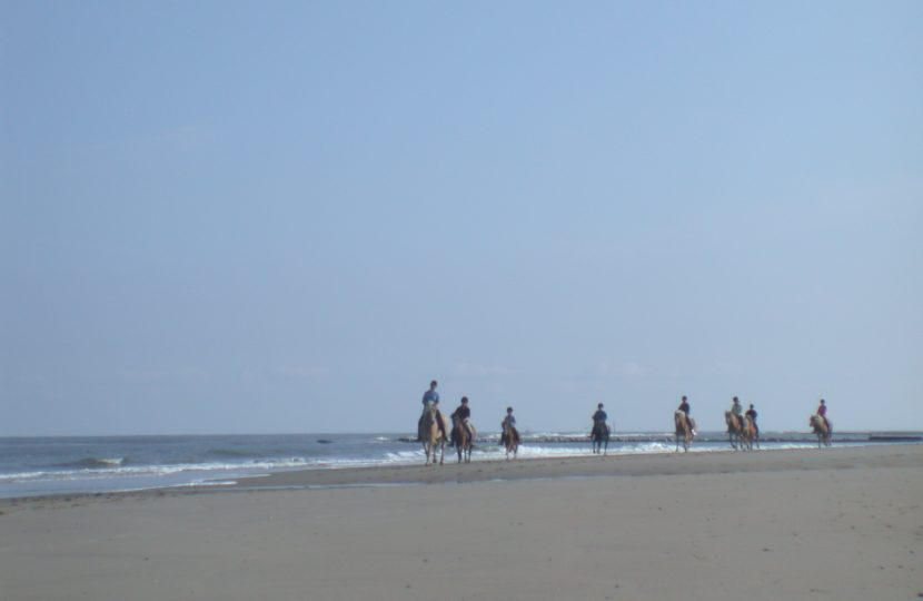 Horseback Riding on Long Beach