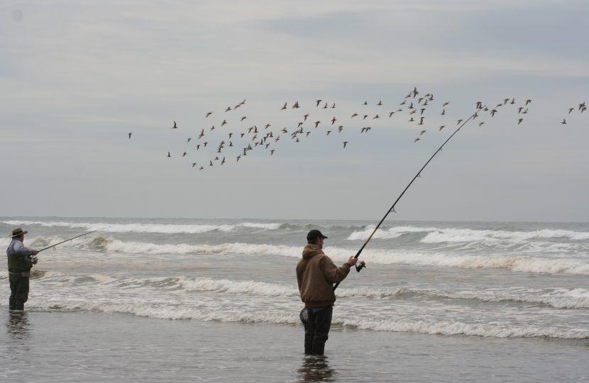 Surf Perch Fishing