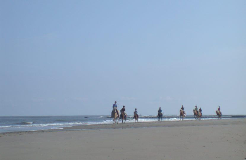 Horseback Riding on Long Beach